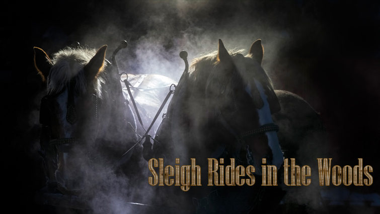 Sleigh Rides in the Woods