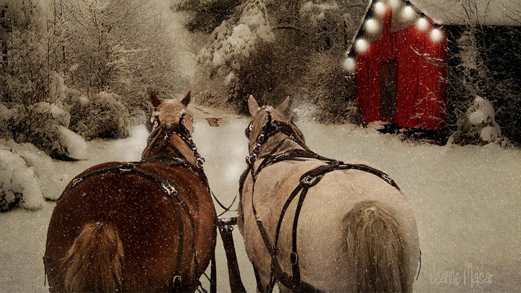 Historic O'Keefe Ranch Sleigh Ride