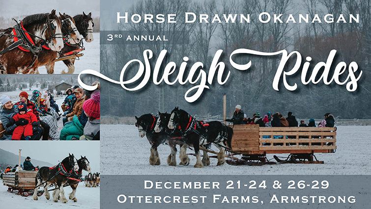 Winter Sleigh Rides with Horse Drawn Okanagan